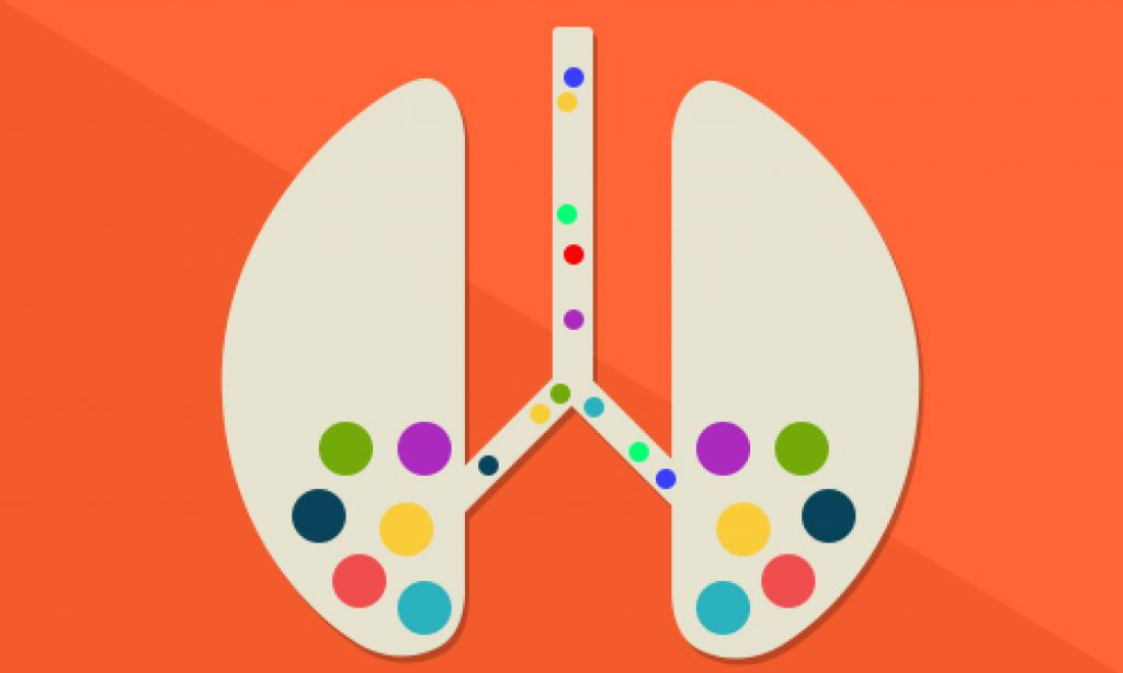 Lungs Image